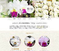胡蝶蘭販売の花Vip